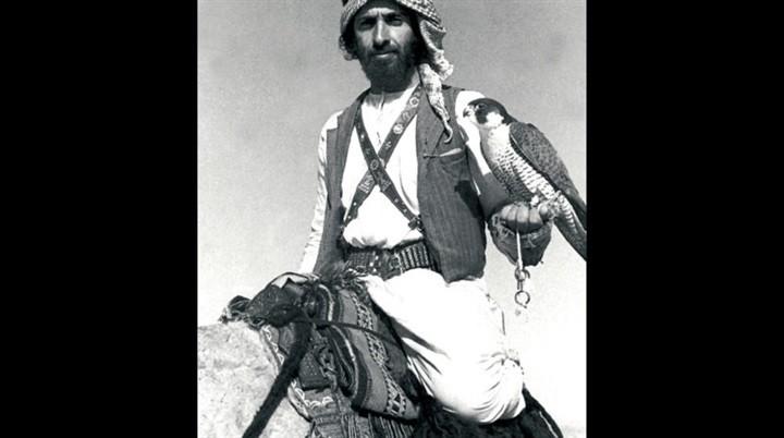 الشيخ زايد محطات نهضوية لا تنسى