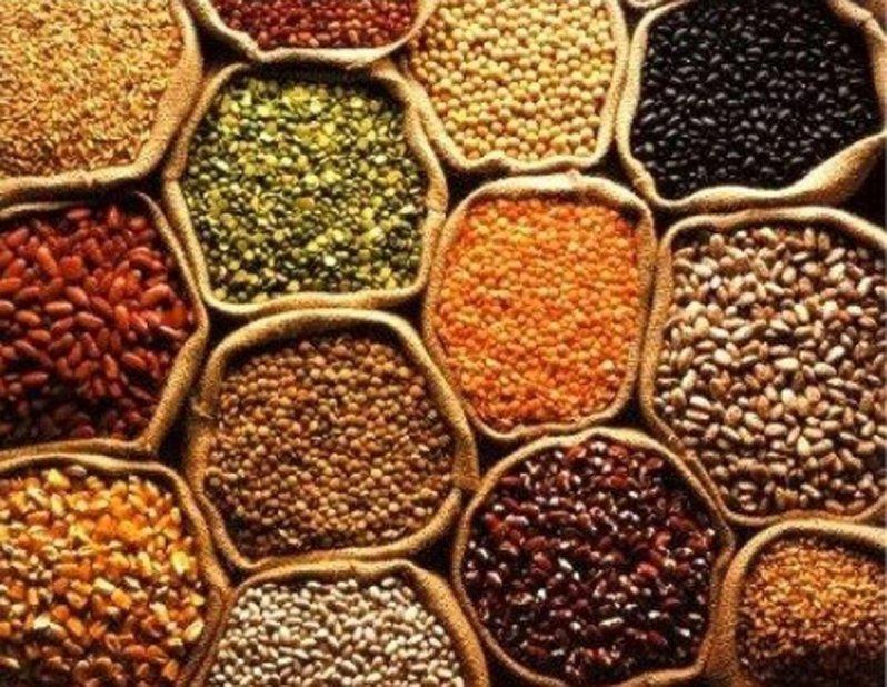 الحبوب الغذائية