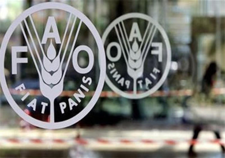 شعار منظمة الأمم المتحدة للأغذية والزراعة (فاو)