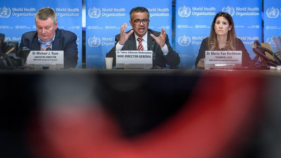 مدير الصحة العالمية
