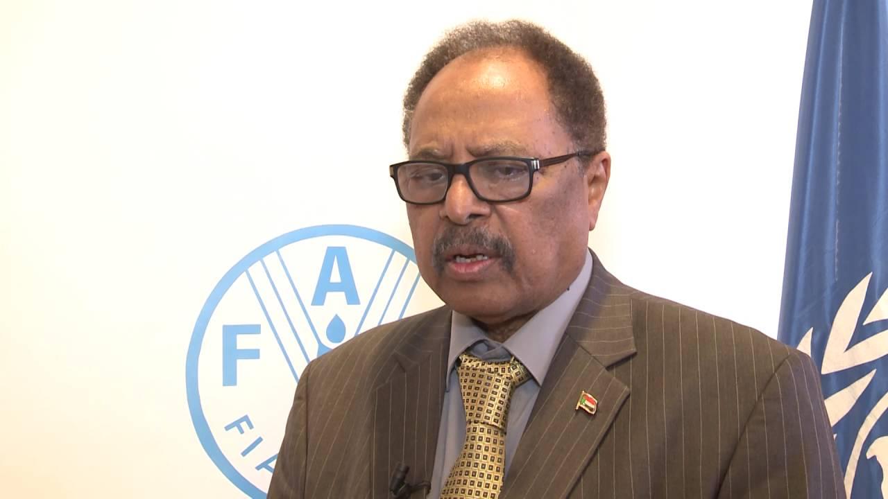 وزير البيئة السوداني الدكتور حسن عبدالقادر هلال