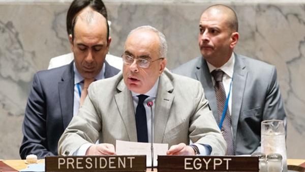 مندوب مصر الدائم لدى الأمم المتحدة السفير عمرو أبو العطا