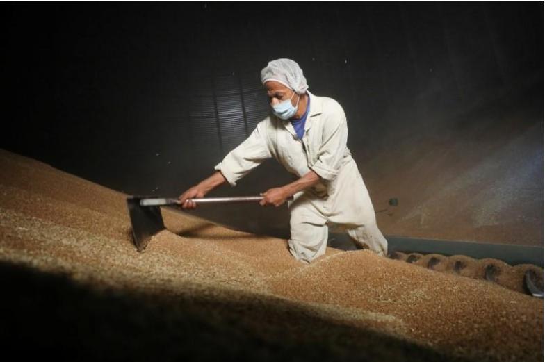 عامل بصومعة للقمح في القاهرة