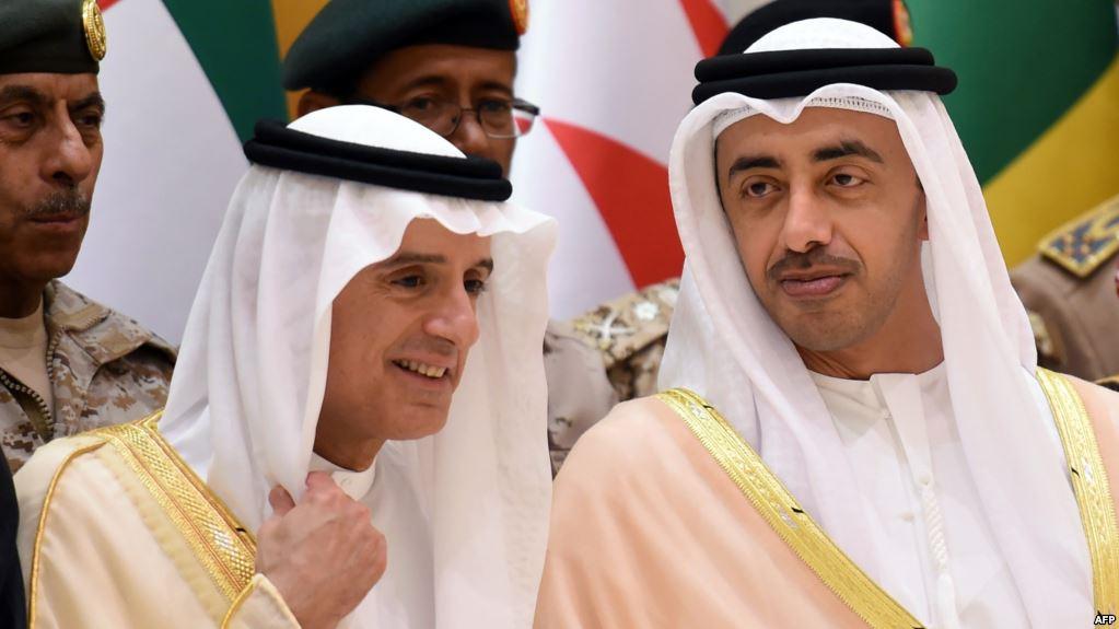 وزير الخارجية الإماراتي ونظيره السعودي