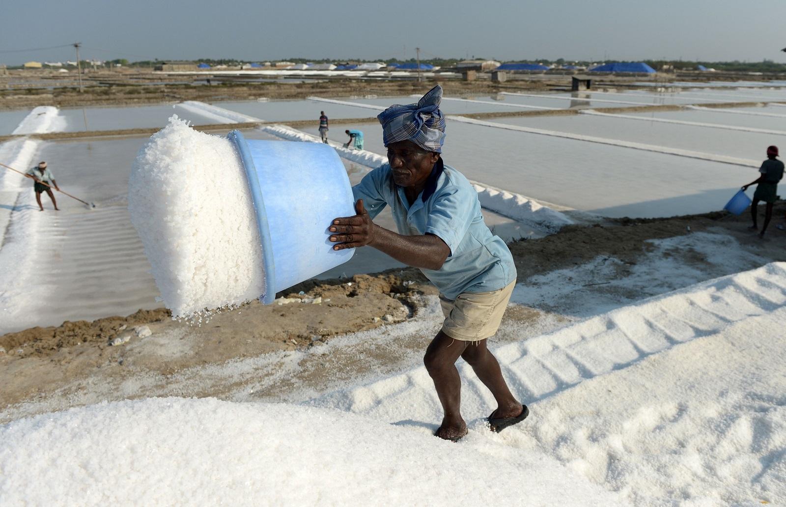 إنتاج الملح