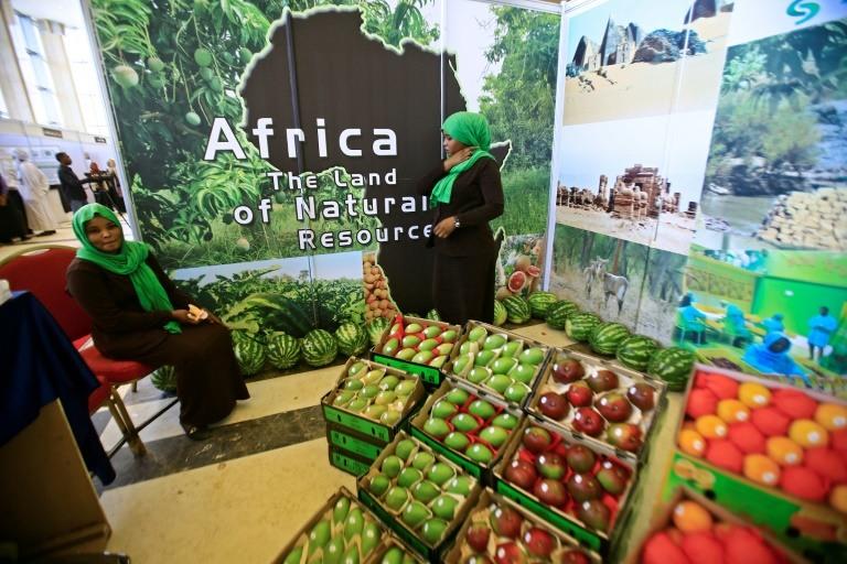منتجات زراعية افريقية معروضة في افتتاح المؤتمر الاقليمي