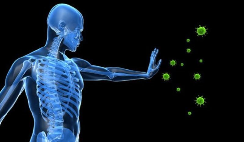 تقوية مناعة الجسم