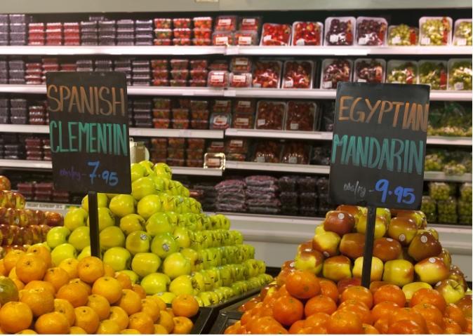 صادرات زراعية مصرية