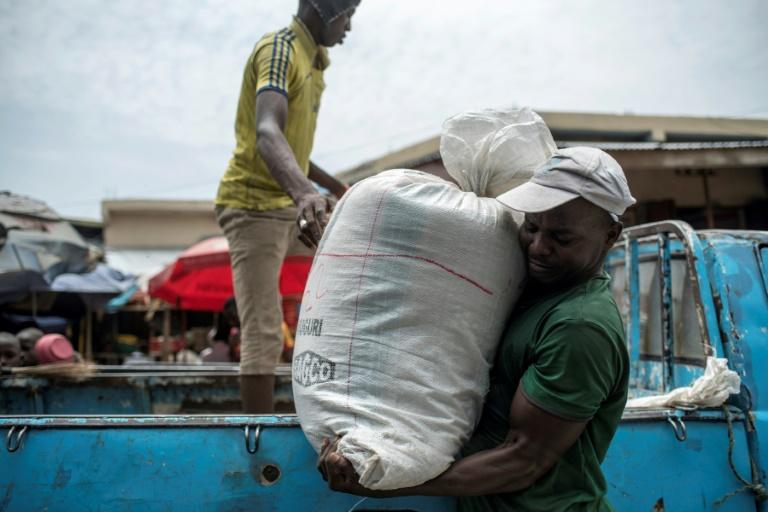 زراعة الأرز في نيجيريا