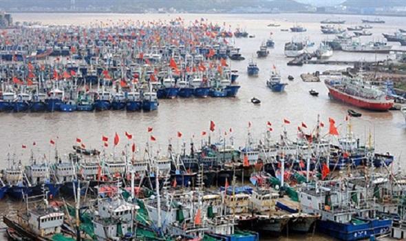 سواحل الصين