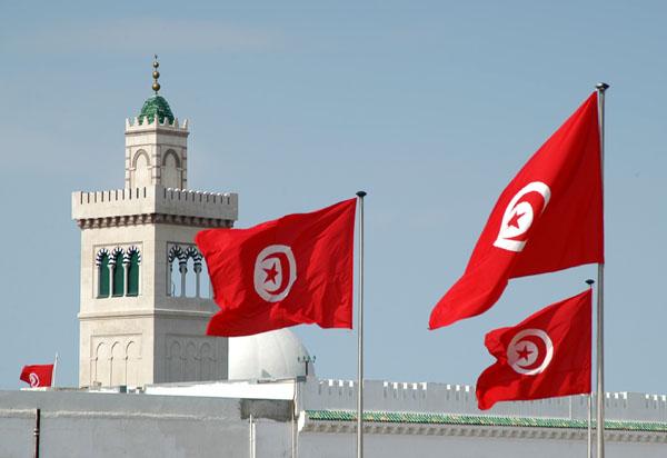 11.7 % زيادة بالاستثمارات الأجنبية فى تونس