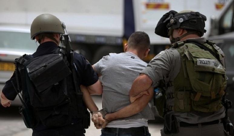 الاحتلال الإسرائيلي يعتقل 12 فلسطينيا