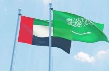 يهدف تحالف البلدين إلىحماية المنطقة من طموحات الجماعات الإرهابية المتطرفة